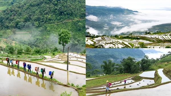 Về Tuyên Quang ngắm Hồng Thái mùa nước đổ: Cả một khung cảnh huyền ảo lạ thường hiện ra trước mắt
