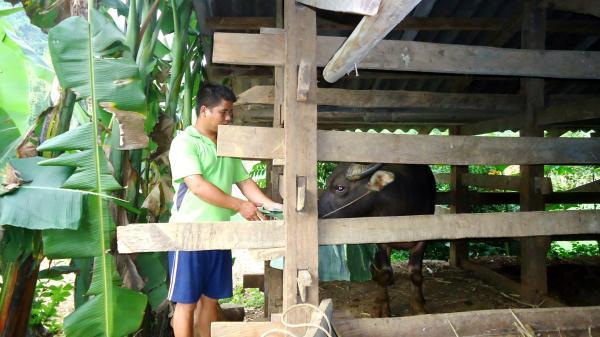 """Cao Bằng: 284 nông dân huyện Hà Quảng được vay vốn từ Quỹ """"Hỗ trợ nông dân"""""""